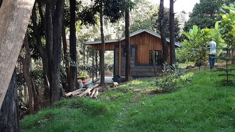 Cottage Kecil yang Selesa di Hutan di Kihingo Cottages