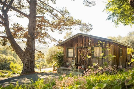 Olive Tree Cabin: Rustic Charm - Quiet Countryside