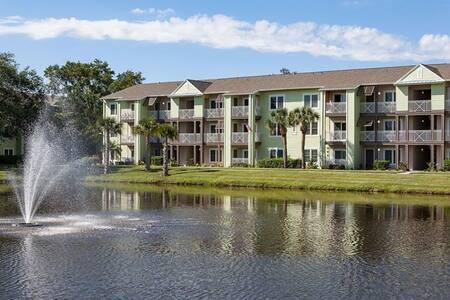 Luxury Apartment in Tampa Bay/St Petersburg