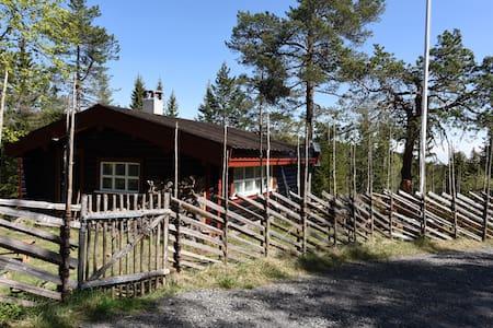 Lille Tverken - Drammen - Cabin