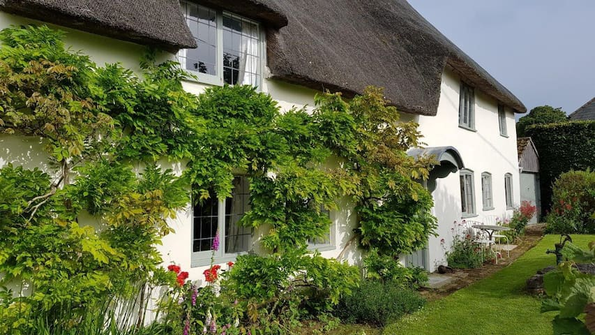 Pretty thatched cottage in the heart of Dorset
