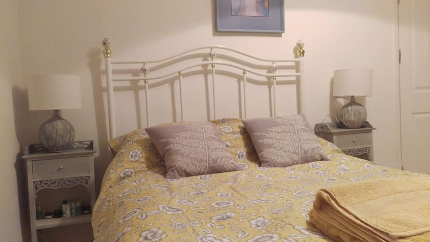 Spacious double, private bathroom - London - House