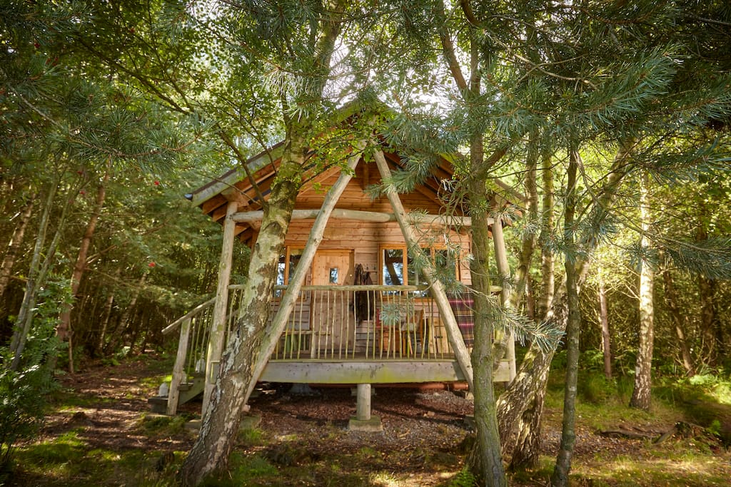 The front of a Tree Lodge