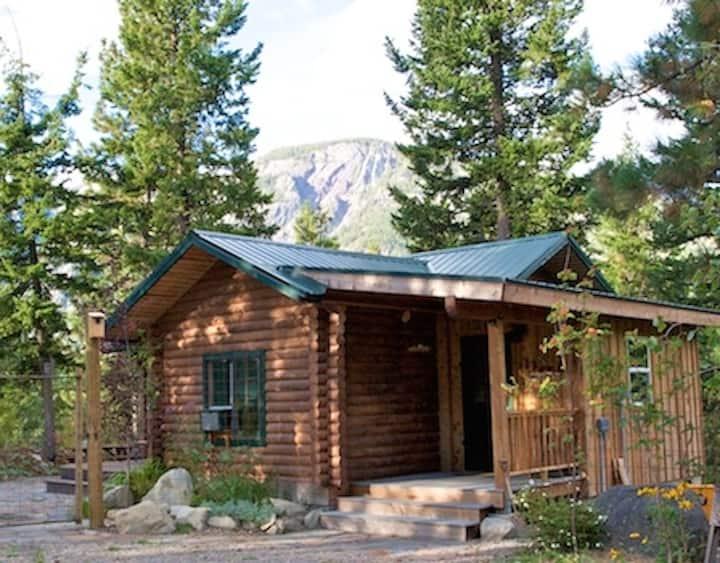 Charming Rocky Top Cabin-Pet Friendly!