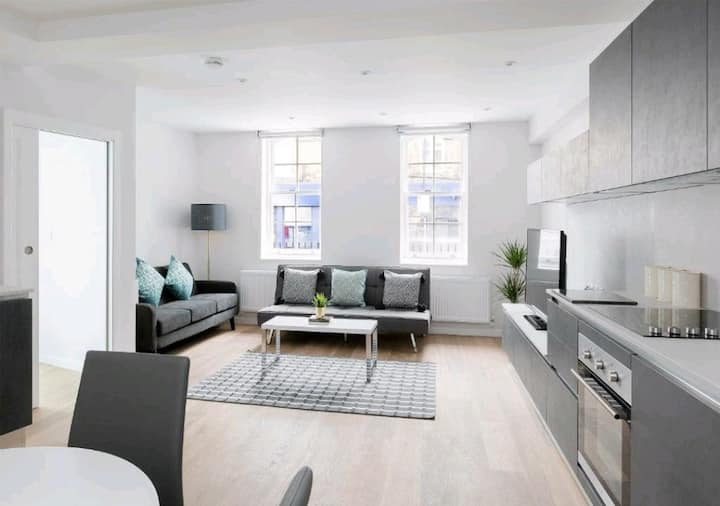 Luxury Central London North Apartment