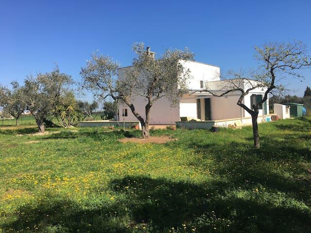 VIAGGIO NEL MAGICO SALENTO - Provincia di Lecce - Villa