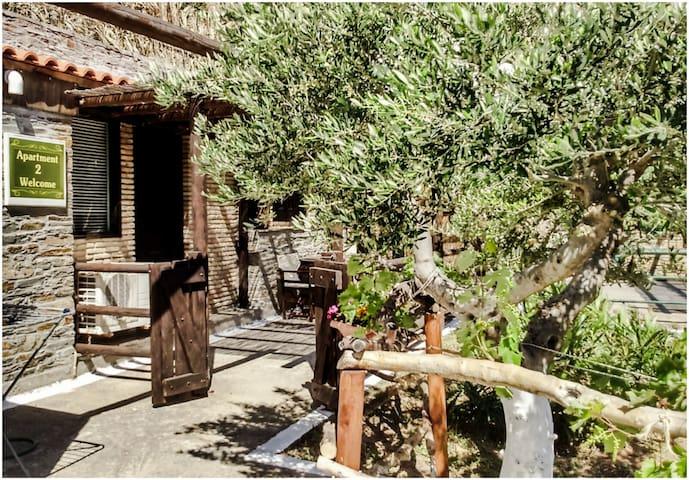 Kypri stone apartment with sea view