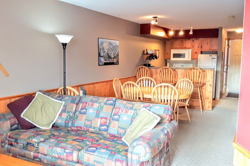 Bright condo with pull out sofa