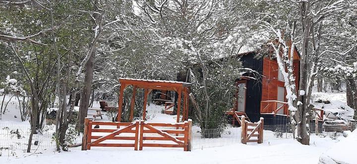 Hermosa cabaña en bosque nativo al pie de montaña