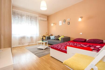 Studio Old Town Sala Palatului - Apartment