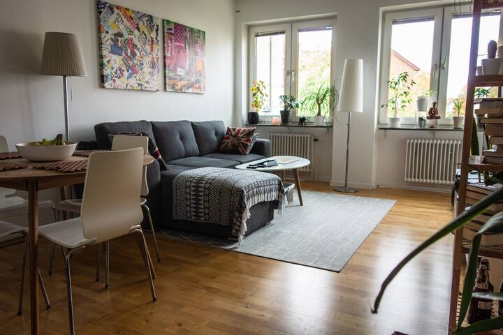 Lovely big apartment in central Malmö 1-3 persons