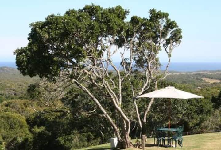 Villa on a Seafacing Nature Reserve