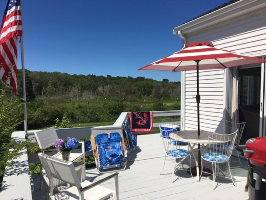 Private deck with grill and panaramic views of the wetland and bird sactuary!