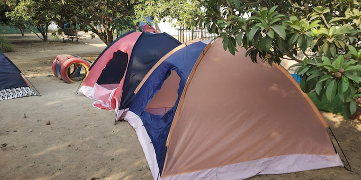 Night Camping, safe and secure