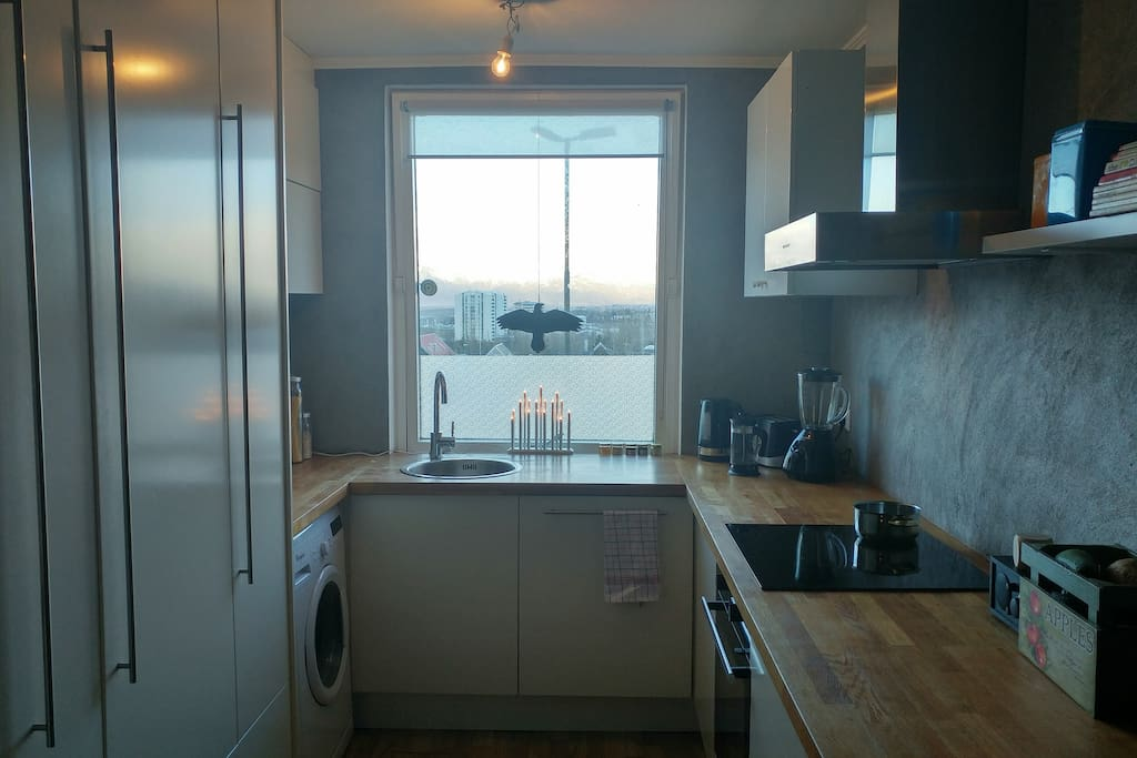 Fashionably looking kitchen with all basic appliances and a great view