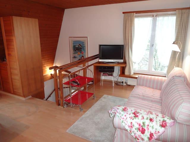 Freundliche Wohnung im Zentrum Dietikon - Dietikon - Квартира