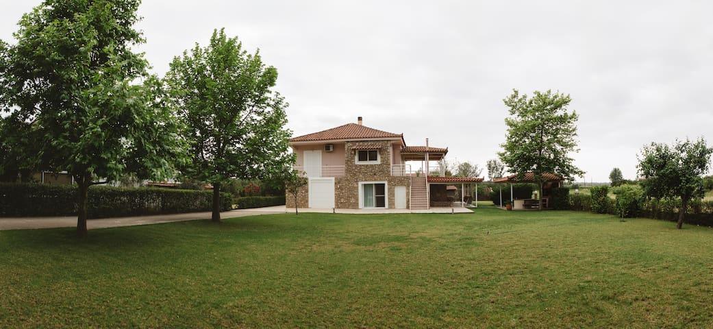 Alexia's House