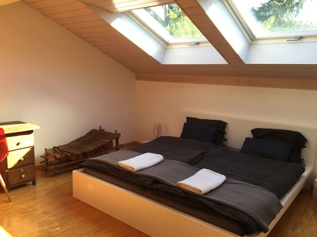 Beautiful room in a cozy house in Bulle - Bulle - Dom