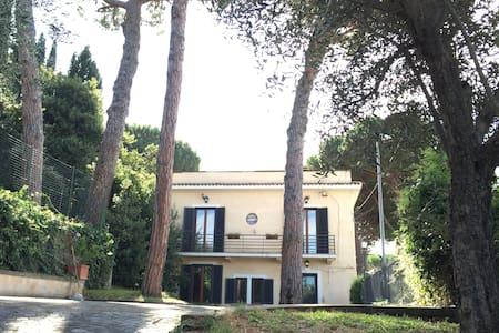 Villa Prince - Grottaferrata