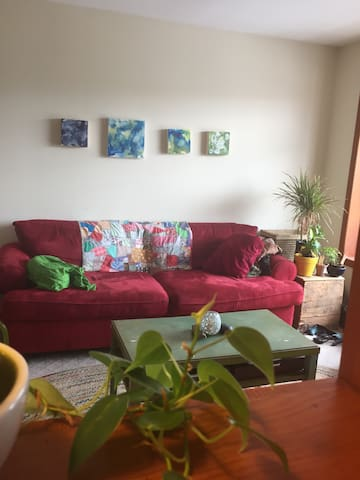 Colorful, cozy living room with plants, paintings & lots of natural light