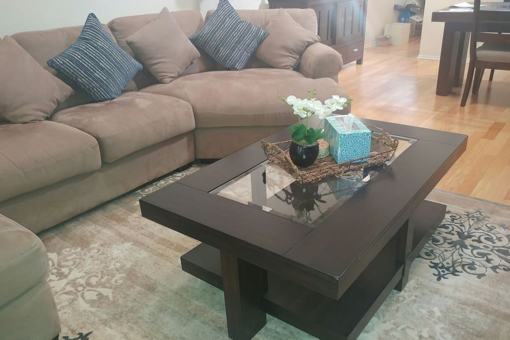 Lounge Area with new dark wood coffee table