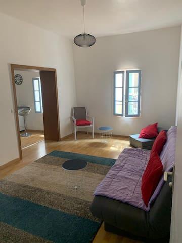 Superbe appartement au coeur du Ceret historique