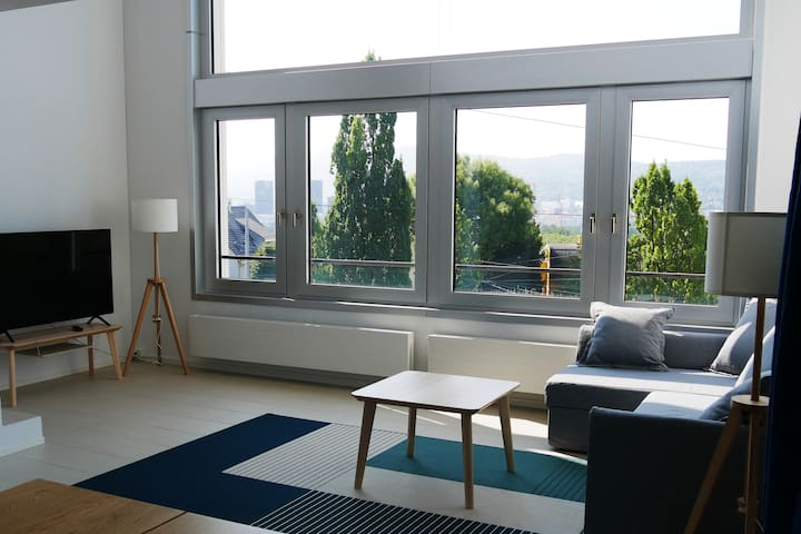 Loft with view over the city at the edge of Zurich