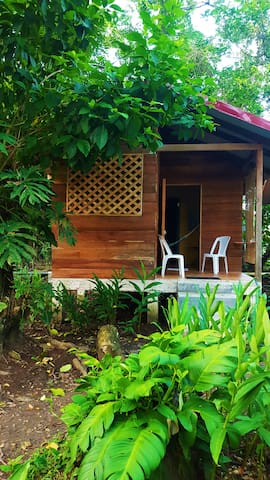 The Rainforest Cabina at Casa Cecropia - Limón Province - Srub
