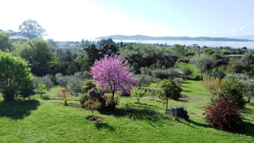 Country house with loft in Xiropotamo, great view
