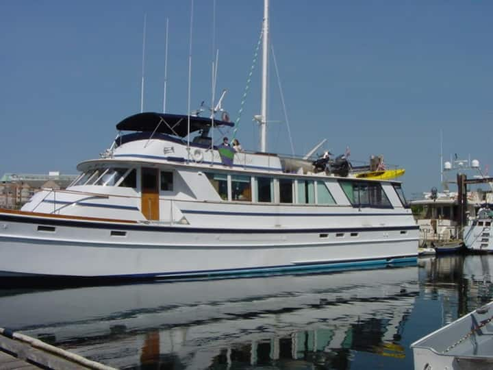 """:Morning Mist"""" Luxury Yacht"""