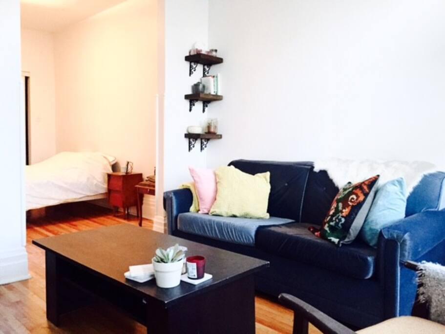 Bright Amp Beautiful 1 Br Den Plateau Apartments For Rent In Montr 233 Al Qu 233 Bec Canada