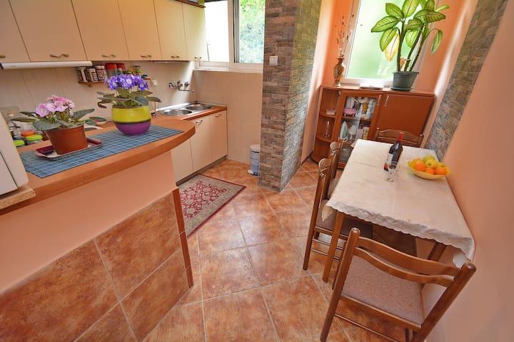 Apartment Rapovac Kotor