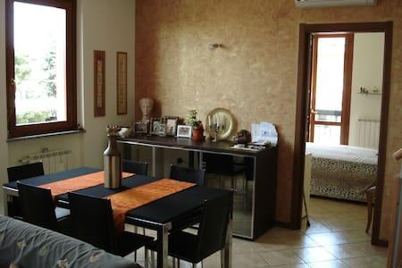 Appartamento arredato ampi spazi - Desio