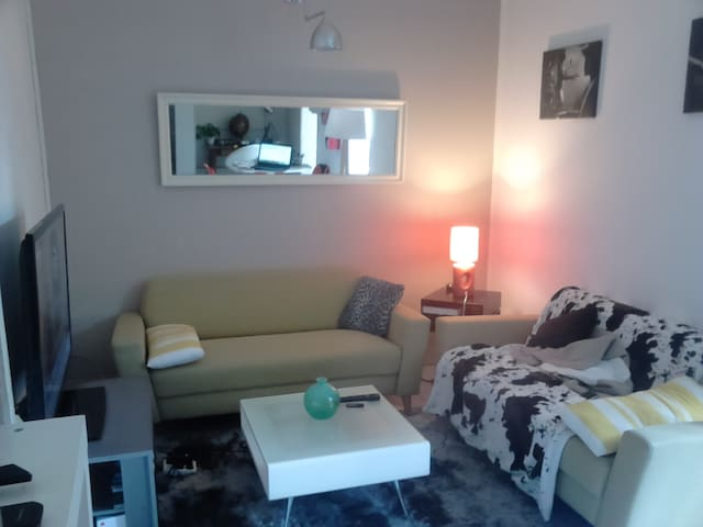 Appartement ANGERS Place Ney - Angers - Apartamento
