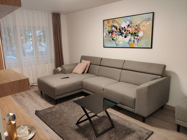 Popasu Apartament
