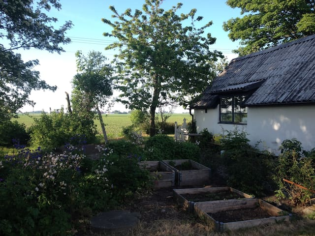 Charming house close to the beach - Ystad - Hus