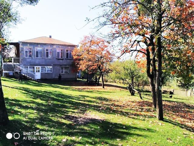 M'Ida travel guesthouse
