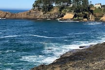 Whale often come right up to the seawall in Depoe Bay! Can you find the whale in this picture?