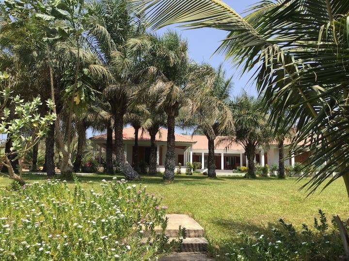 Belle maison sur grand jardin entourée de palmiers