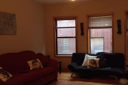 Big Room in Lakeview(walk to Wrigley or  Boystown) - Chicago