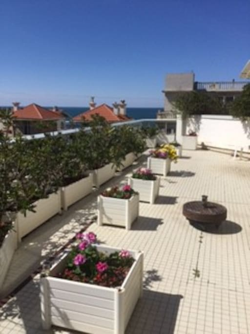 Terrasse Vue Mer Biarritz : Appartement terrasse vue mer Appartements u00e0 louer u00e0