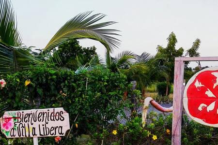Italian B&B Villa Libera a Panama - Pedasi