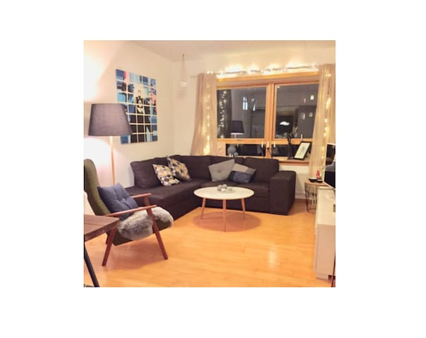Cosy 2-room appartment in the heart of Østerbro