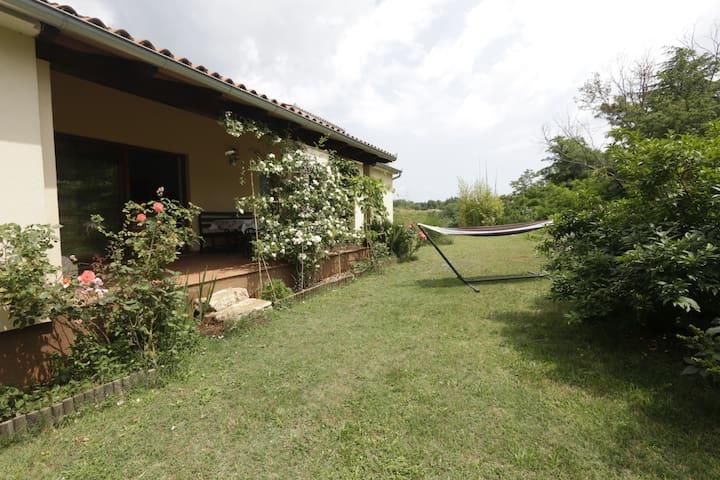House Antoni