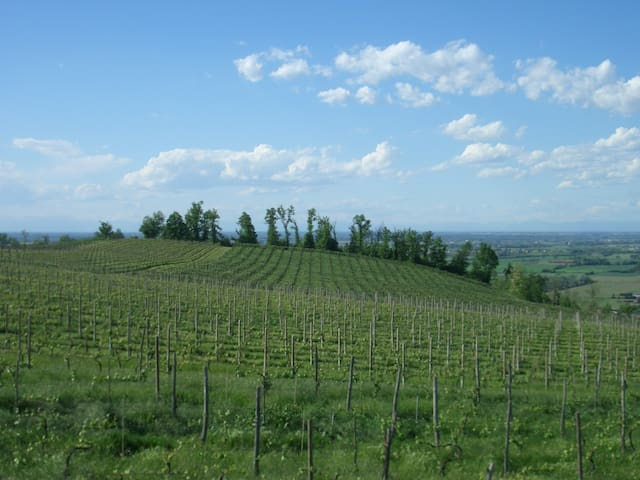 Mansarda panoramica sulle colline dell'Oltrepò P. - Santa Giuletta - Lägenhet