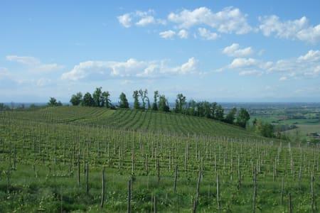 Mansarda panoramica sulle colline dell'Oltrepò P. - Santa Giuletta - アパート