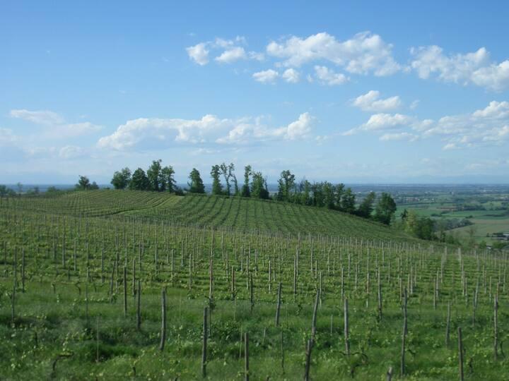 Mansarda panoramica sulle colline dell'Oltrepò P.