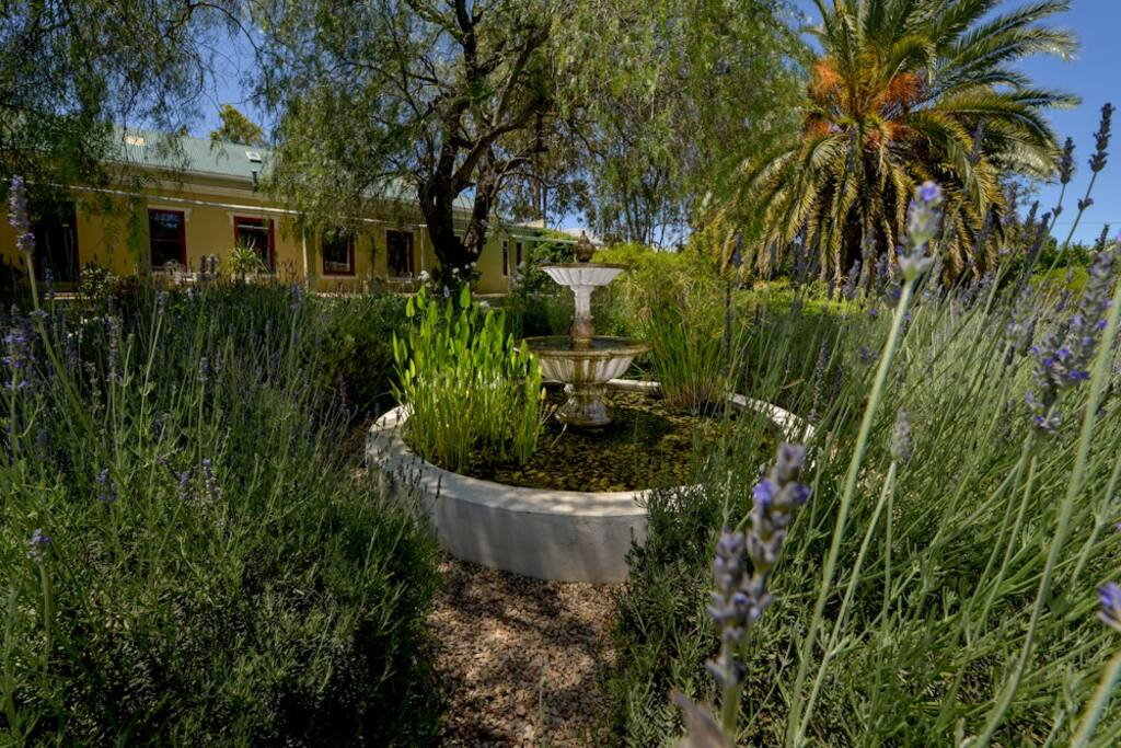 Lush garden with 100 years old pepper trees