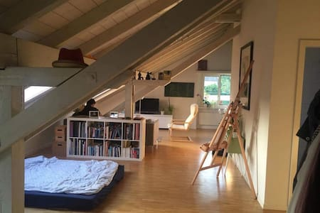 Light and cozy studio - 卢塞恩 - 公寓