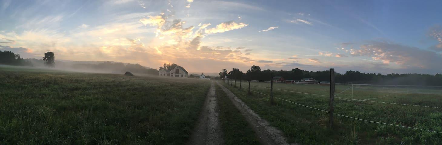 Valley View Farm Farmhouse - Williamsburg - Casa